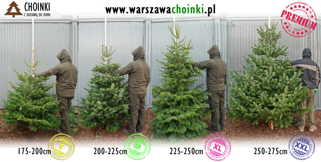 sklajka_Premium_175-275cm