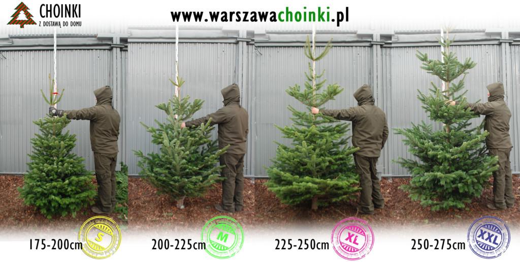 sklajka_Standard_175-275cm